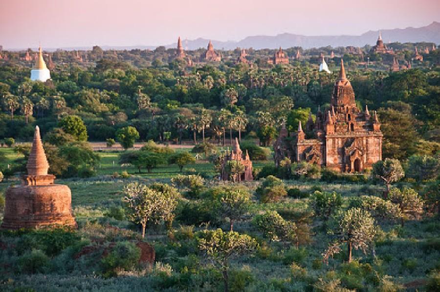 v-birme