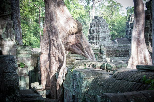 hram-ta-prom-kambodzha