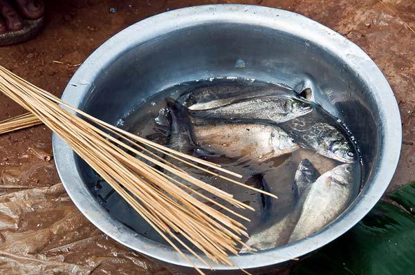 na-uzhin-eli-rybu