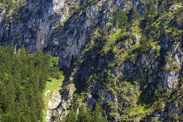 landshafty-alp