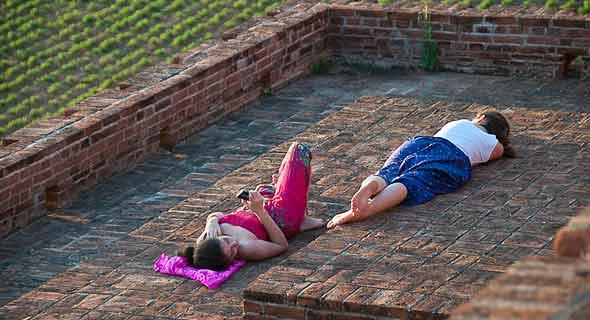 бирманки отдыхают