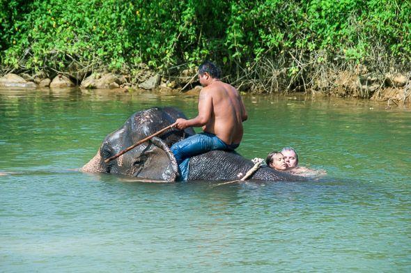 чанг означает слон