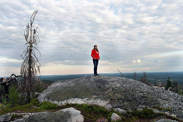 Вершина гора Воттоваара в Карелии