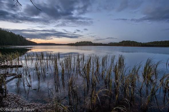 сказочные озера псковской области