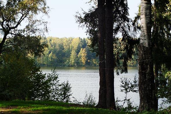 пушкинский район тихое тишково