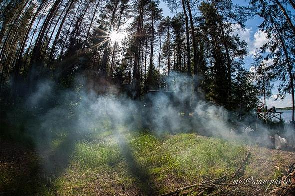 утренние туманы на селигере