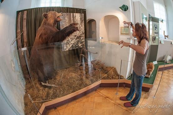 музей осташков