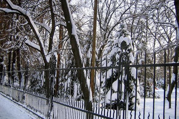 городской сад липки зимой