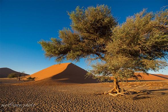 намибия страна на юге африки