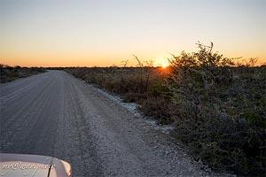на арендованном автомобиле по дорогам намибии