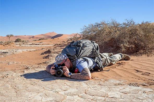 пустыня намиб флора