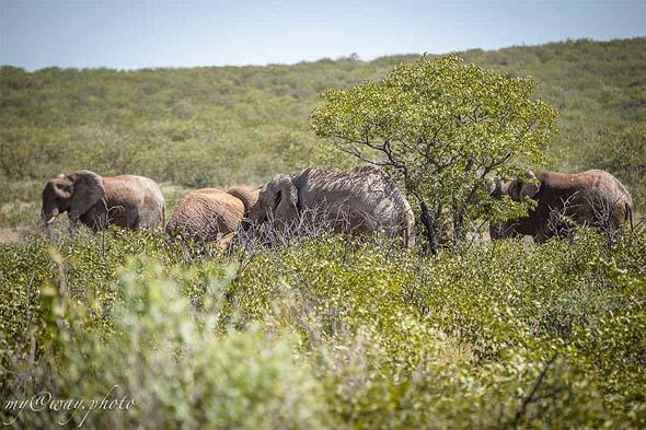 намибия самая фотогеничная страна