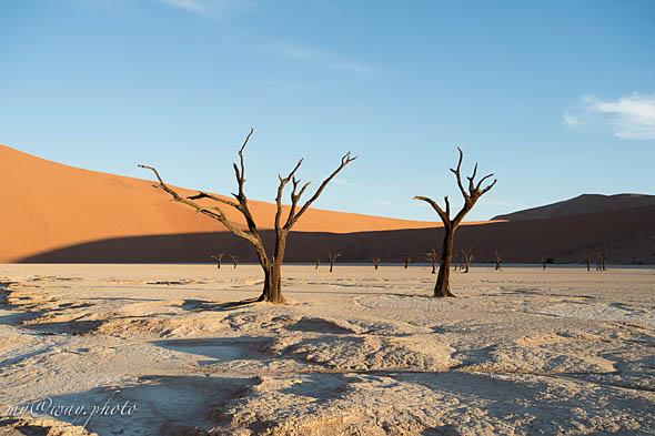 пустыня намиб как магитом тянет к себе кинематографистов