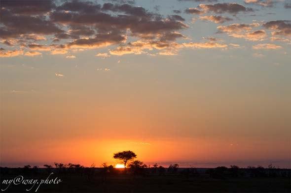 далеко от границ нашей родины прекрасная страна намибия