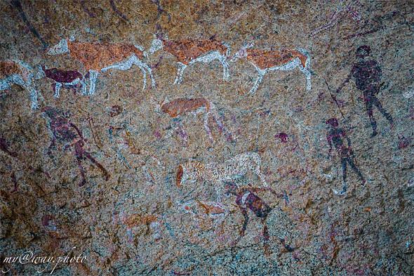 один из множества наскальных рисунков  древних бушменских племен