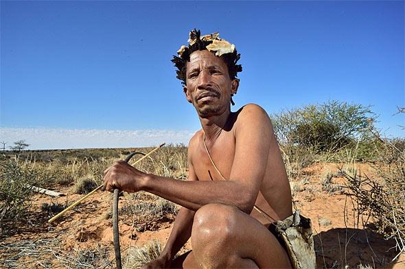 бушмен на охоте в пустыне калахари