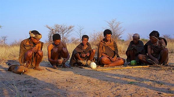 племя бушменов между традициями и современностью
