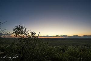 природа национального парка этоша