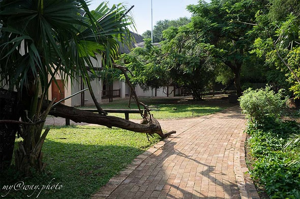 chobe safari lodge отель в касане ботсвана