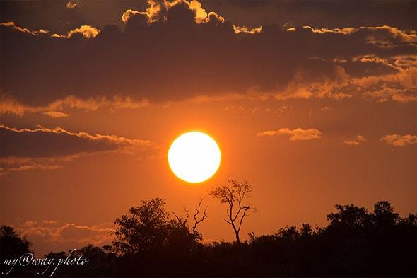 ботсвана национальный парк чобе красивое окончание дня