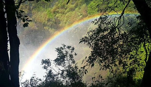 яркая и сочная дневная радуга на водопаде виктория