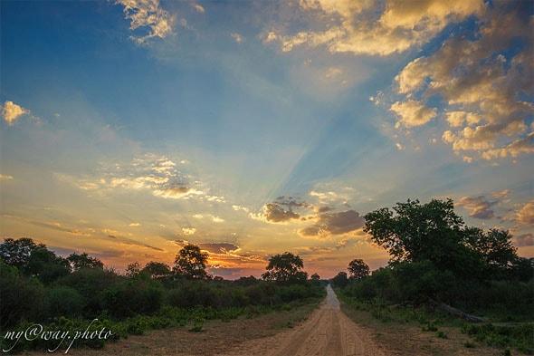 в национальном парке региона замбези