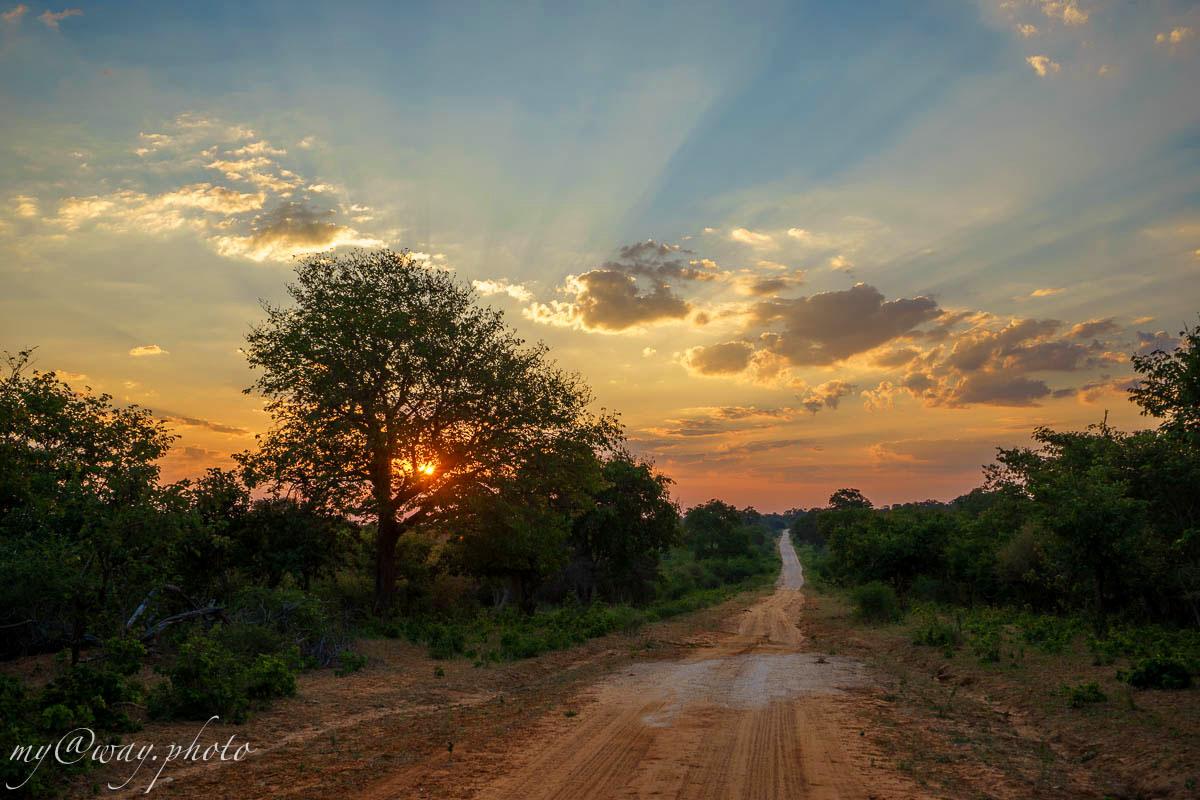 национальный парк бвабвата солнце  устремилось к горизонту