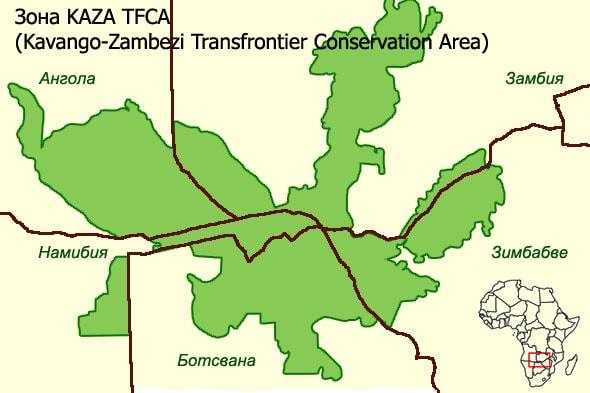 каванго замбези общая заповедная зона пяти стран