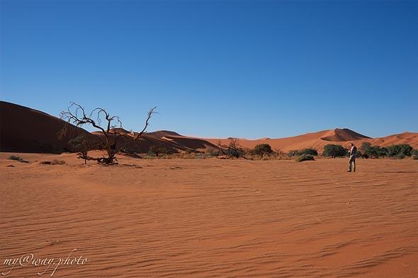 великая пустыня намиб