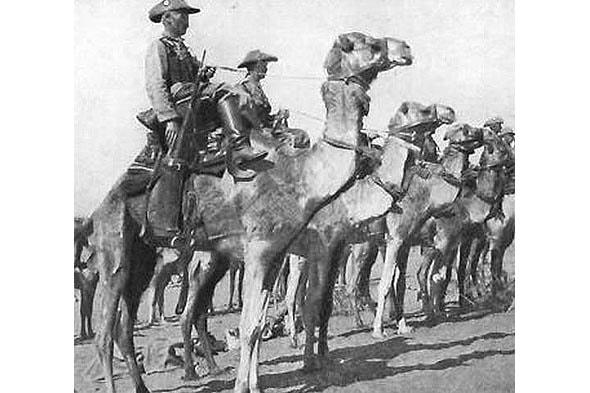 капитан пересаживает своих рейтаров на верблюдов