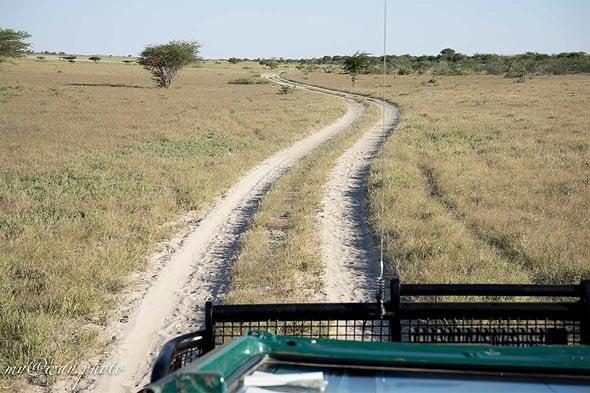 пустынная область макгадикгади
