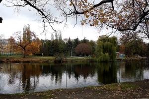пруд городской парк саратов