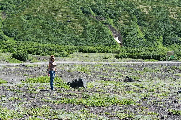 альпийские луга территория обитания евражек