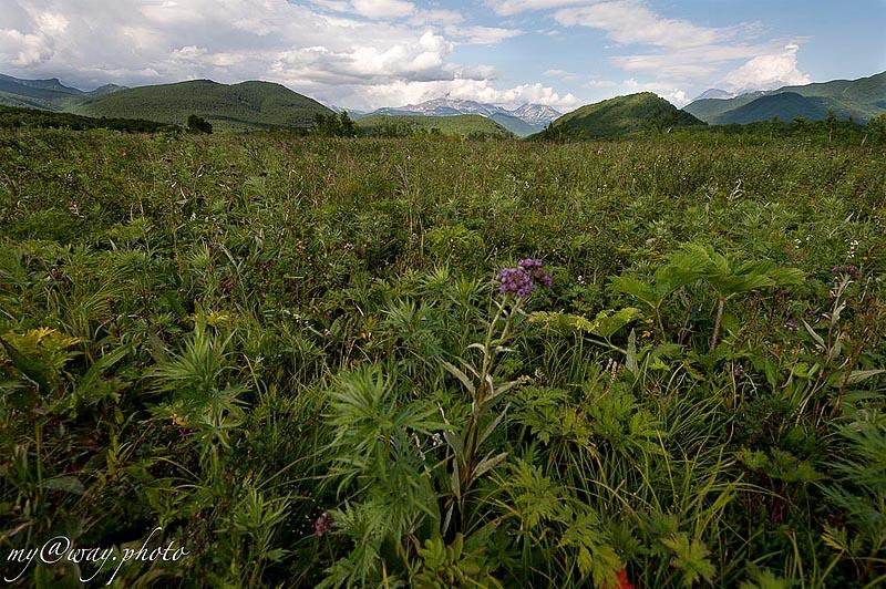 налычевский природный парк великолепная панорама