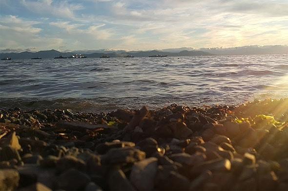 на берегу великого океана
