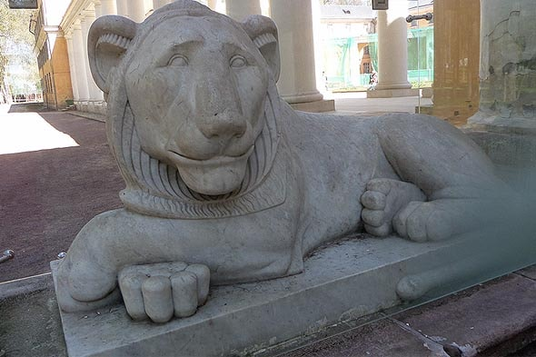 мраморный лев запертый в аквариуме
