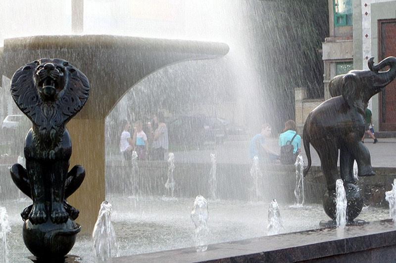 саратов фонтан одуванчик
