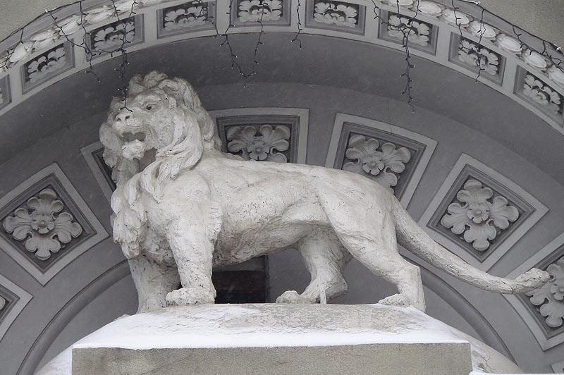 лев в старом купеческом городе саратове