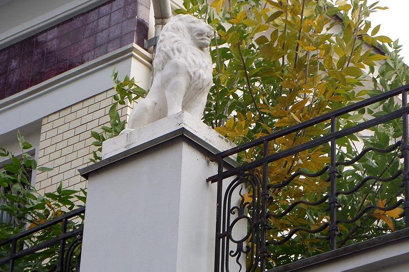 один из львиного поголовья купеческого саратова