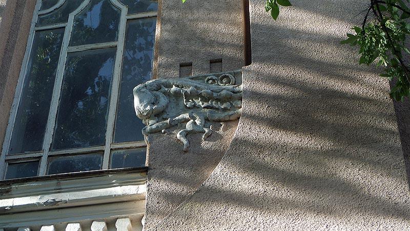 квакнула из-за кочки лягушка