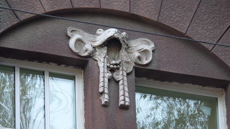 лягушка на стене особняка братьев грингоф