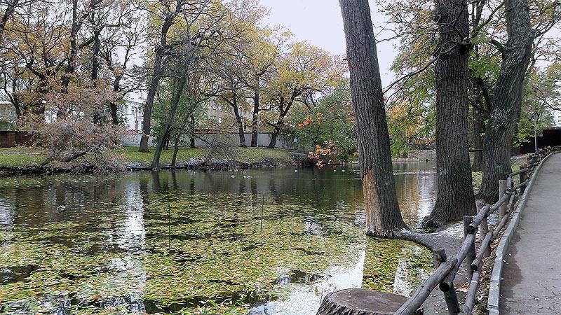 пруд в саратовском городском парке