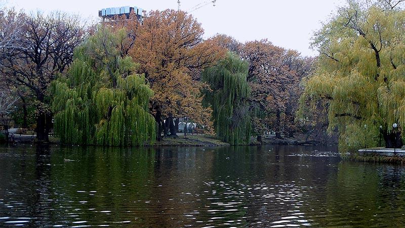 в городском парке отдыха саратов