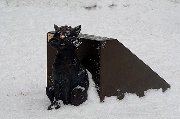 на саратовской земле сидел кот матроскин