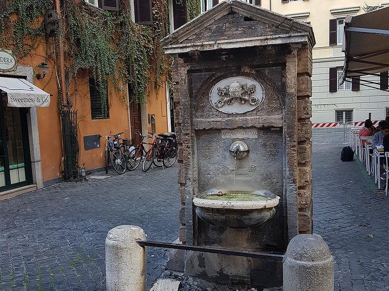 фонтанелла разновидность питьевых фонтанчиков