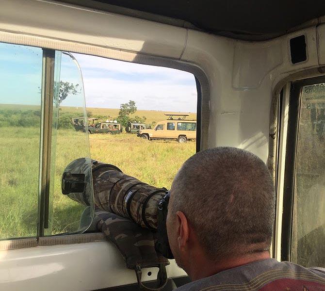 наблюдаем и фотографируем животных масаи мара