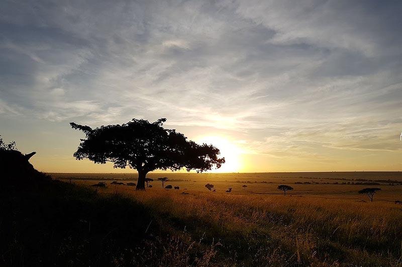 красивые пейзажи масаи мара