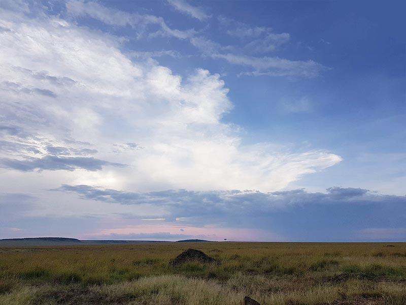 просторы заповедника масаи мара