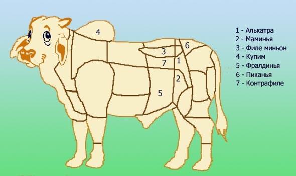 разделения говяжьей туши на специальные отрубы