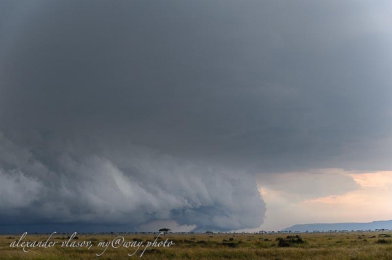 на саванновых равнинах мары скоро пойдет дождь